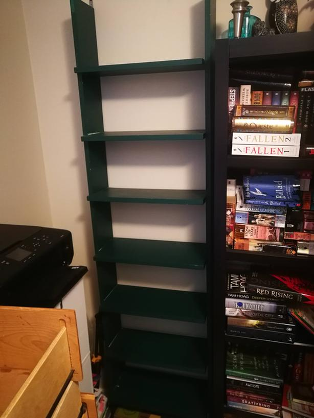 Green Shelf - $40 OBO