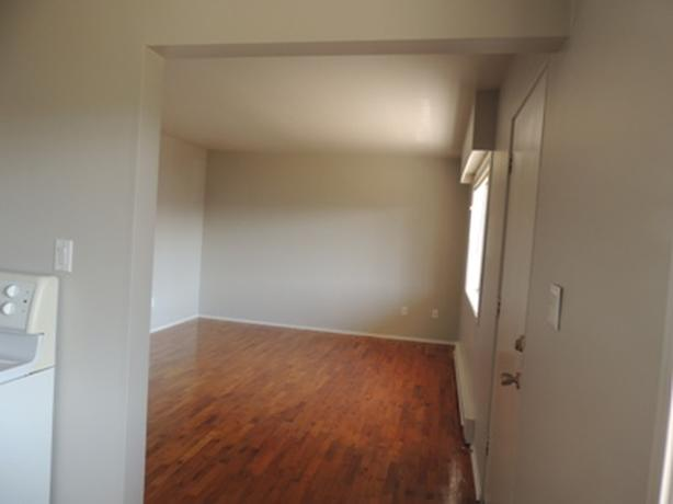 3 Bedroom Suite Available November 1, 2018