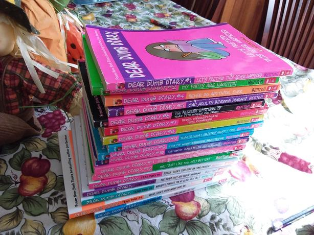 Dear Dumb Diary & Totally Lucy book series