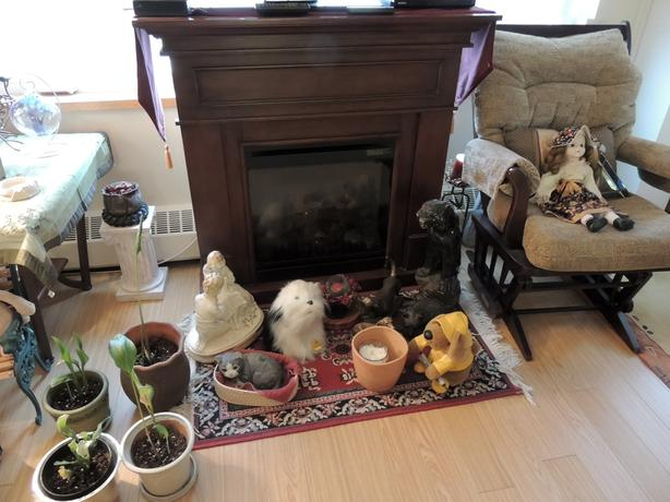 Used Electric Fireplace
