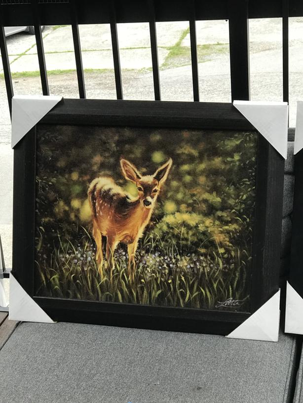Fawn in a Meadow - Framed Print