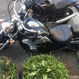 98 honda shadow ace 750cc