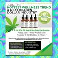 Want to make a fortune in the CBD Oil Industry ?