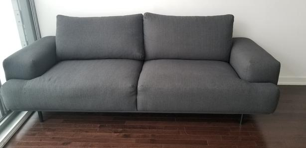 Couch for Sale (3 months old)