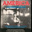 Two Vietnam War History Books
