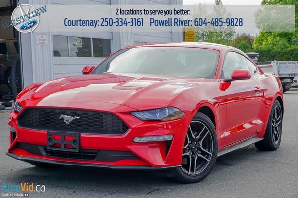2019 Ford Mustang EcoBoost  - Low Mileage