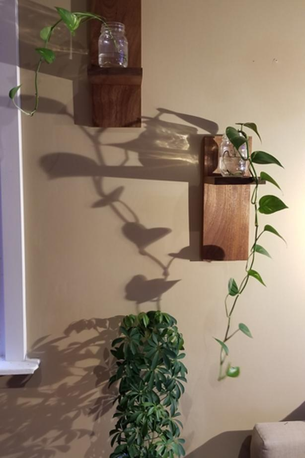 BEAUTIFUL Solid Wood Shelves