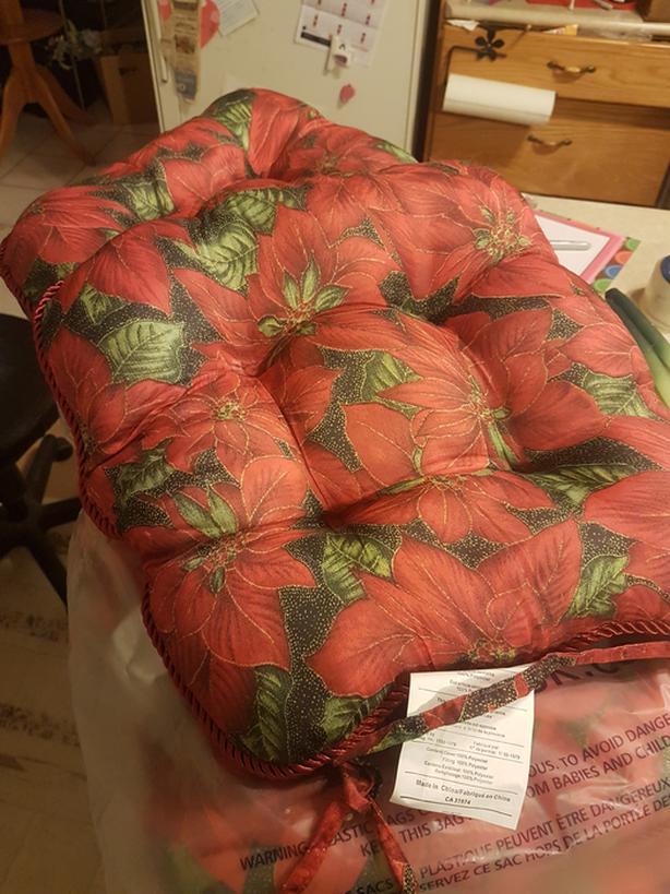 Brand New Poinsettia Christmas Pillows