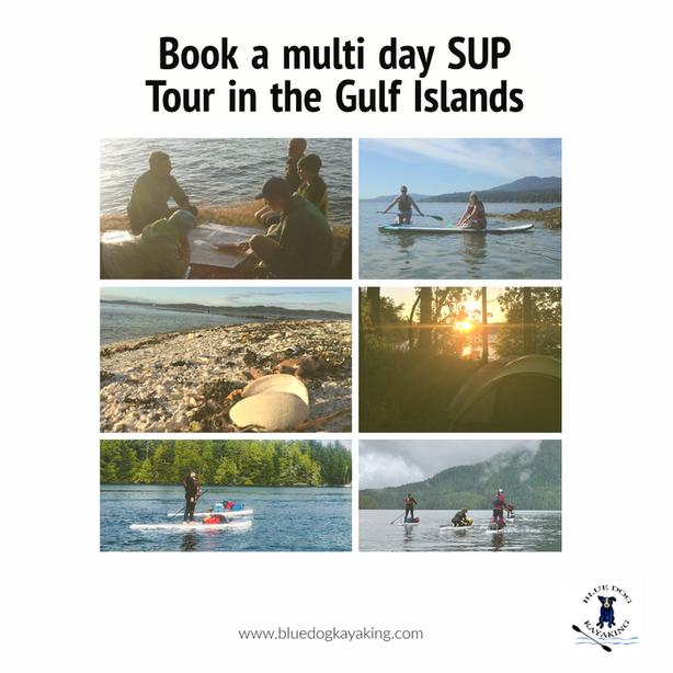 3 day SUP tour in the Gulf Islands National Park, Vancouver Island