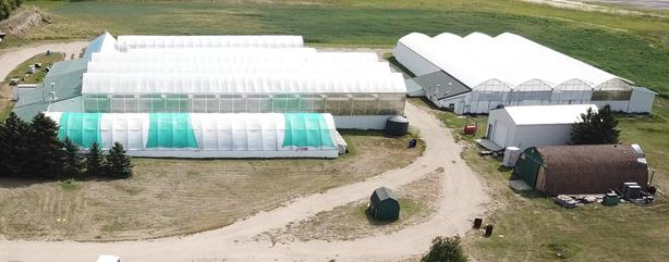 Green House Agricultural Farm Company for sale