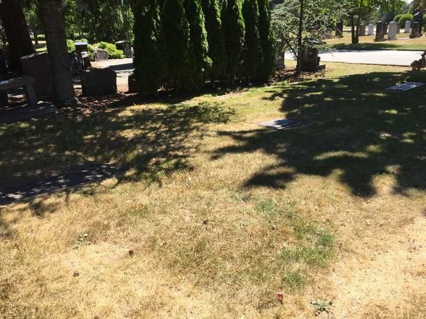 2 Side by Side Valley View Burial Plots