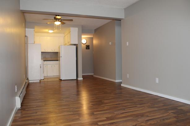 *FREE INTERNET* Newly Renovated 1 bedroom suite for just $799/month