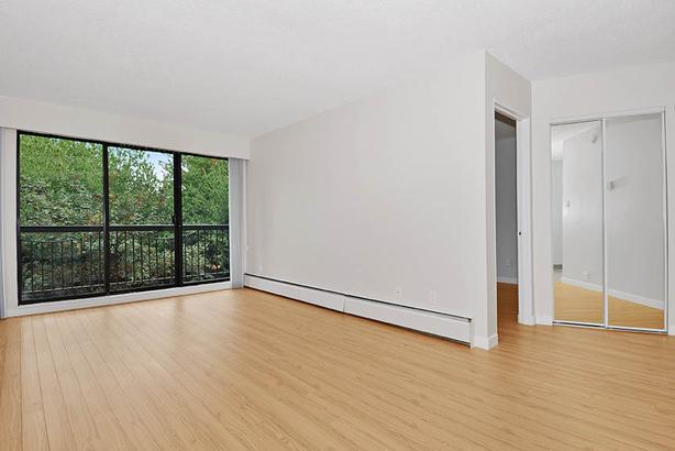 Modern 1 Bedroom in Kitsilano! Steps to Kits Beach & West 4th!