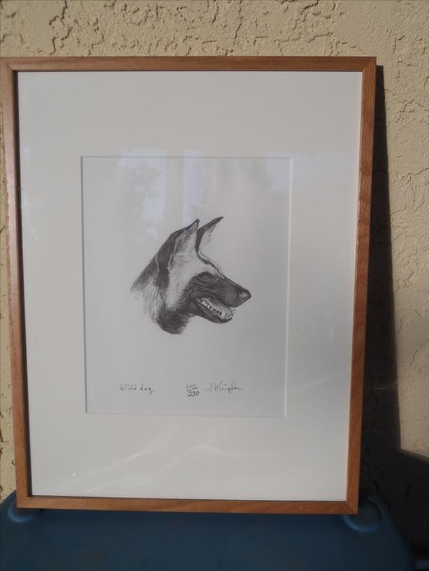 """Wild Dog"" Signed Print"