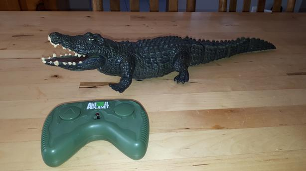 Crocodile with remote control