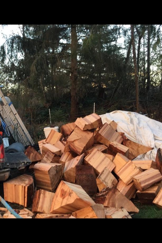 seasoned fir firewood