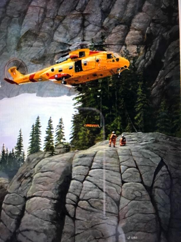 442 SAR Squadron painting of Cormorant