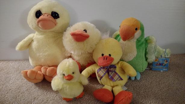 Plush Ducks and Parrot