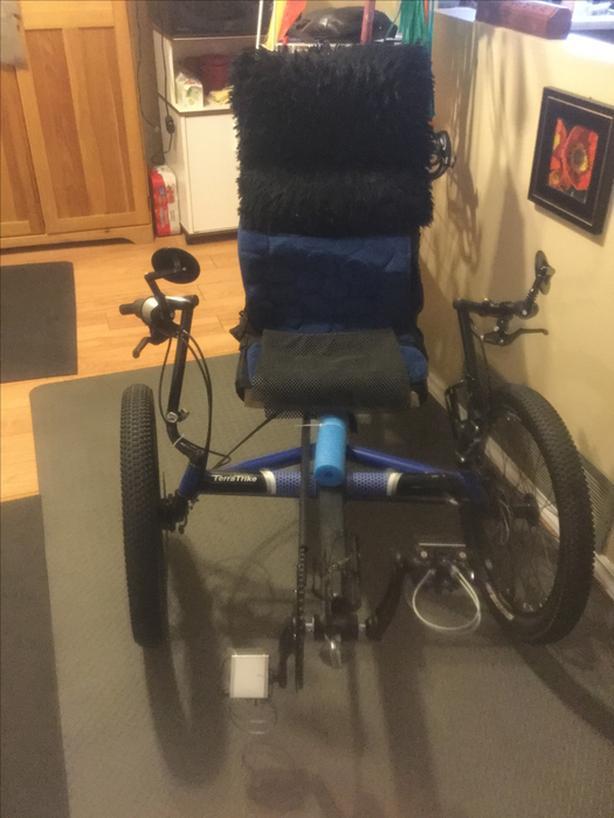 Rover Recumbent Trike $1800