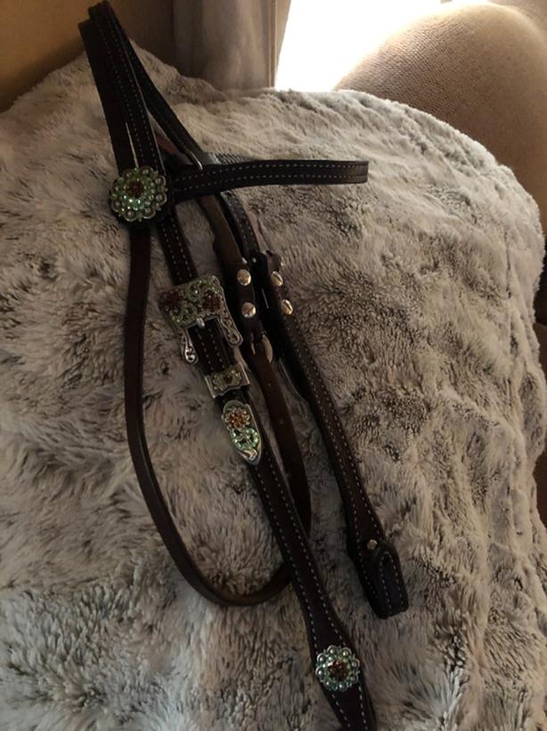 billy cook  headstall bridle