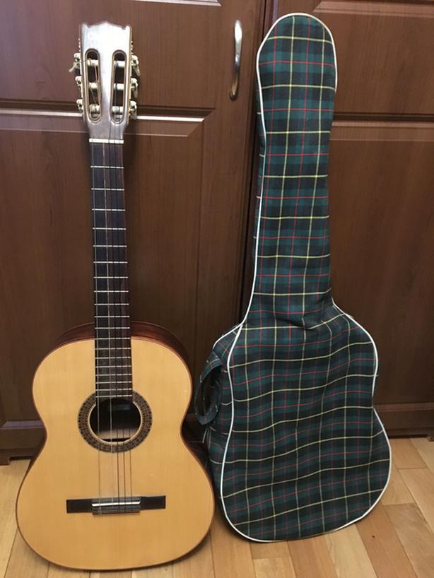 1974 Giannini Guitar