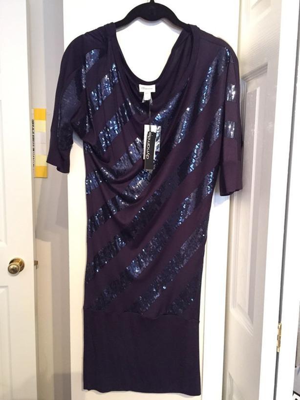 Dynamite long shirt/ dress