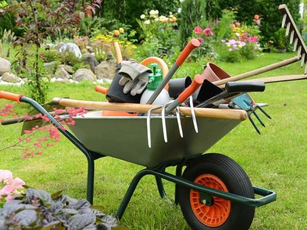 Need Help Cleaning Up The Yard For Spring Port Alberni Alberni