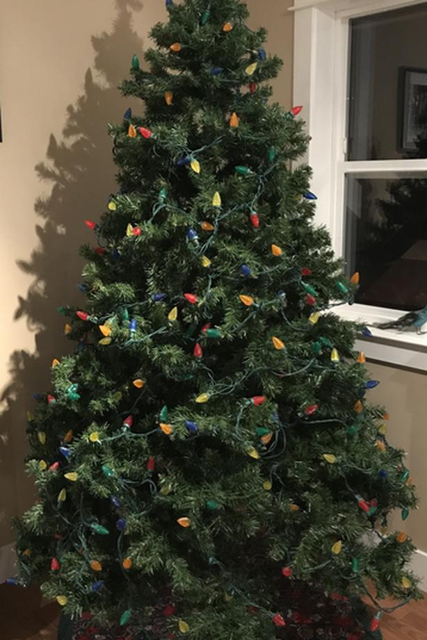 7 Ft Christmas Tree with LED Lights