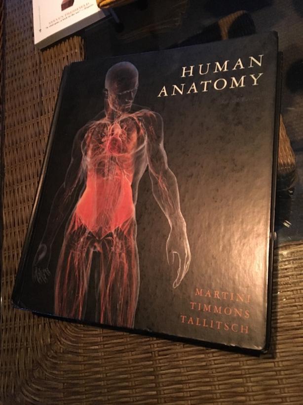 Human Anatomy By Martini Timmons Tallitsch Central Saanich Victoria