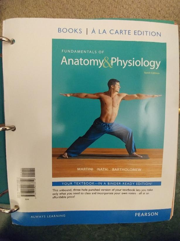 Camosun/Uvic Textbook Fundamentals of Anatomy and Physiology