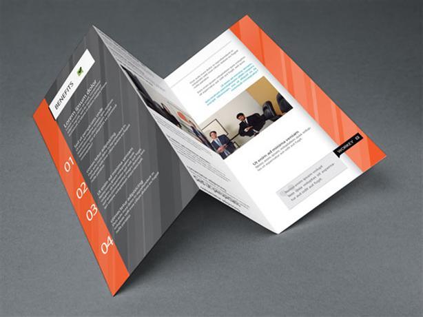 Print Consultant
