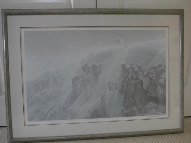 Limited Edition Bateman Print - Arctic Cliff White Wolves