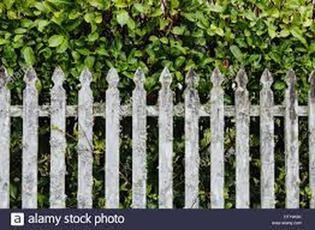 WANTED: Picket fencing