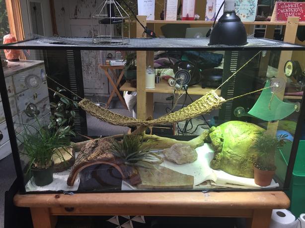 Reptile Terrarium Aquarium Cage Extra Large Victoria City Victoria