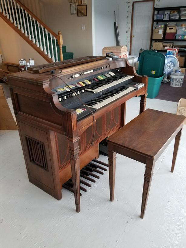FREE - Organ