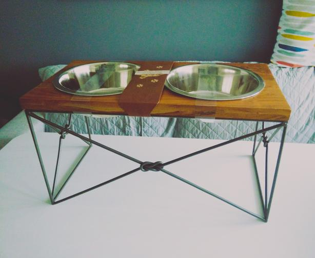 Selling Raised Dog Eating/Drinking Station (NEW) - $90