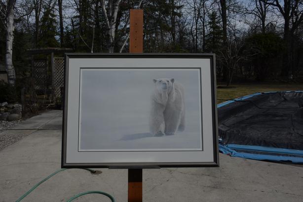 Face Off by Terry Isaac [POLAR BEAR}