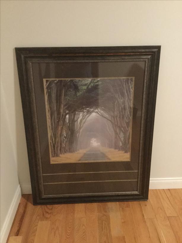 Large framed nature artwork - trees