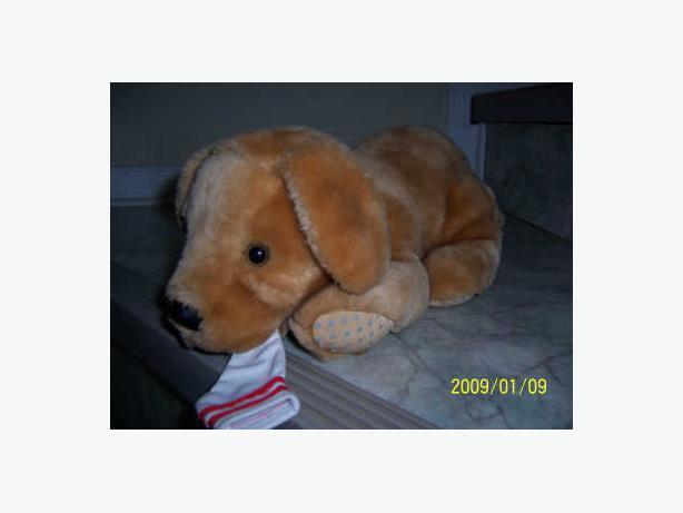 CASSELMAN - chien qui grogne avec sons -