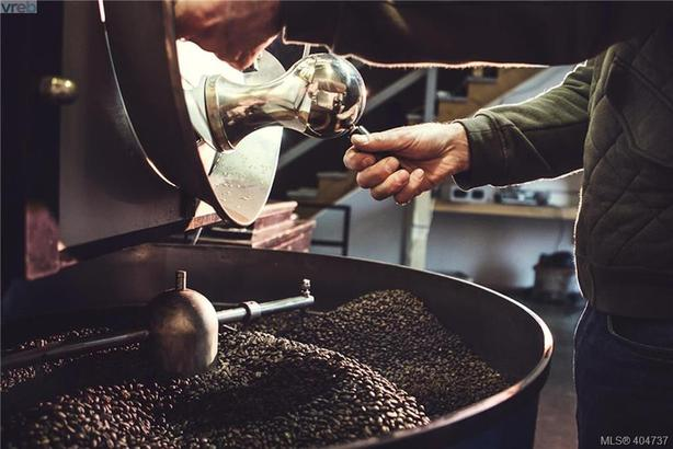 Local Coffee roaster and Cafe for Sale