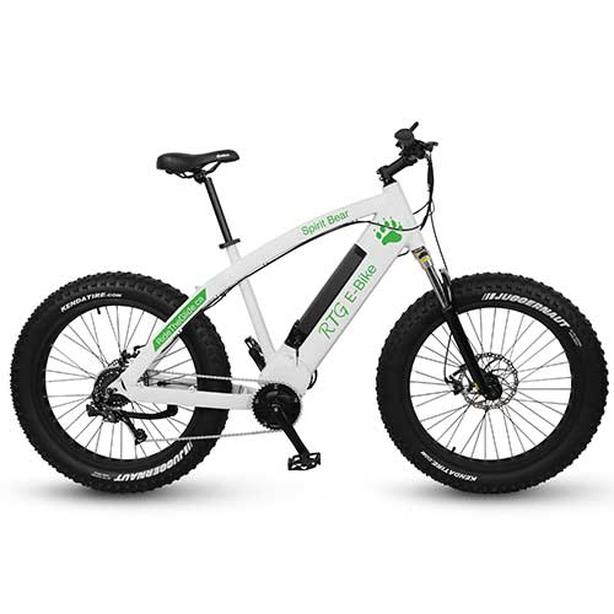 Used Spirit Bear High Performance Fat E-Bike