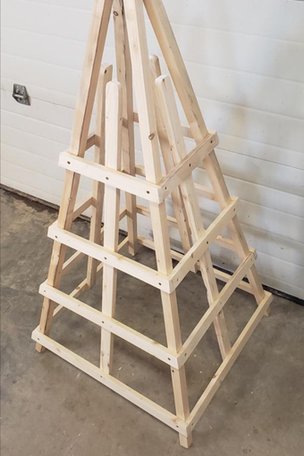 Plant frame for climbing plants