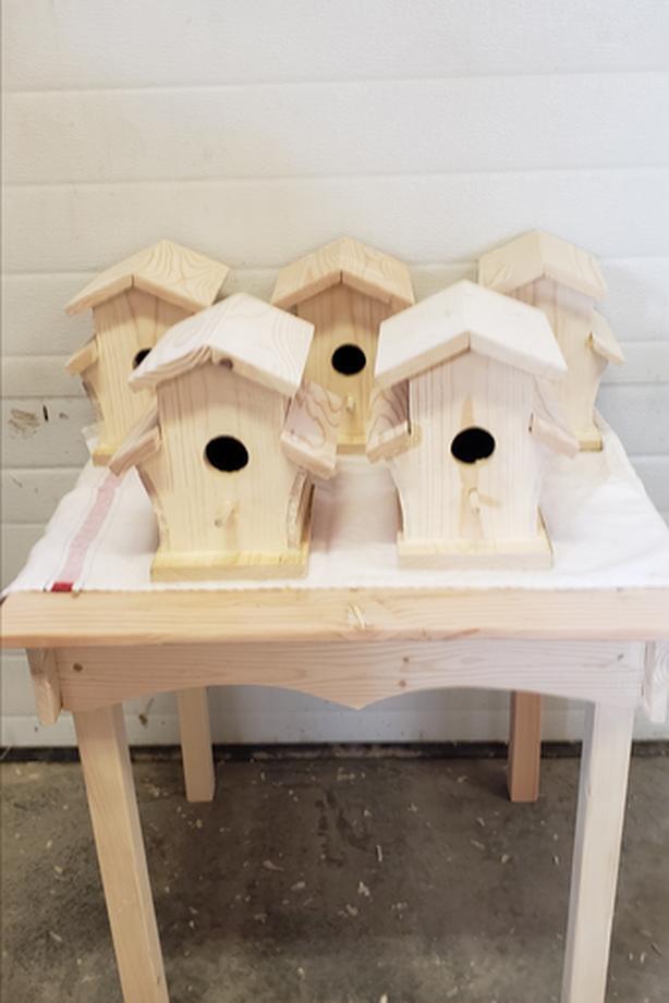 Homemade Bird House(s)