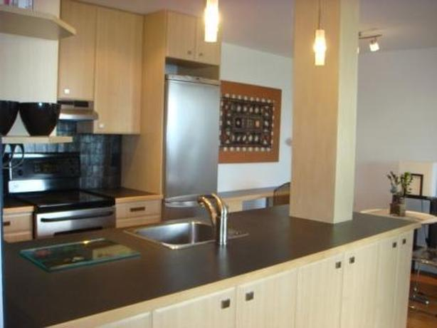 One Bedroom Furnished Condo Downtown