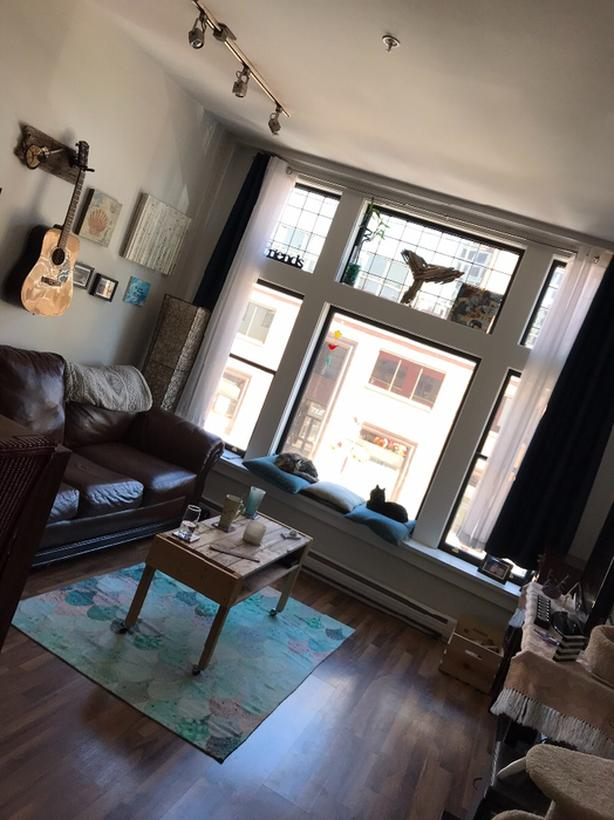 Downtown apartment/cat sit (May-Aug)