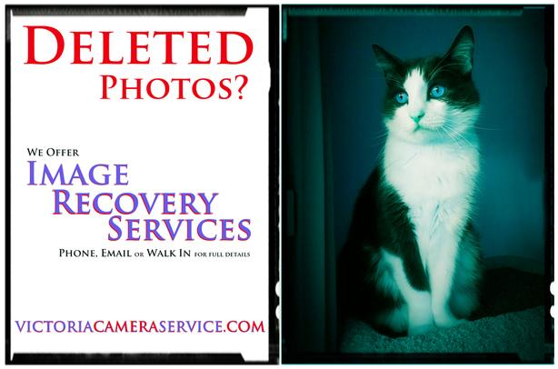 Deleted Photos? Try our Image Recovery!