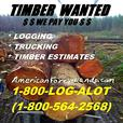 WASHINGTON LOGGING Company Timber Buyer TRUCKING Trees Harvesting Clearing NW
