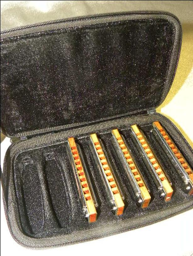#161616-1 Hohner 5 piece Case of Blues harmonica set with case