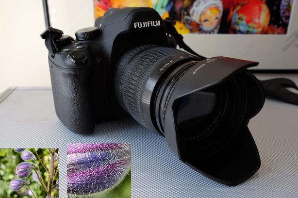 Fujifilm Fuji X-S1