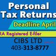 VIRTUAL Personal & Business Tax Services since 1999 - Stay at Home and be Safe!